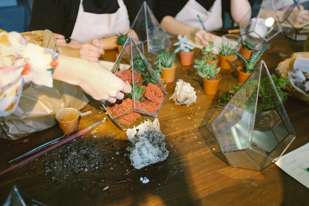 Un groupe participant à un atelier jardinage avec des succulentes