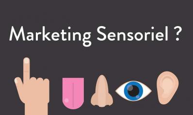Le marketing sensoriel : un véritable atout pour les points de vente