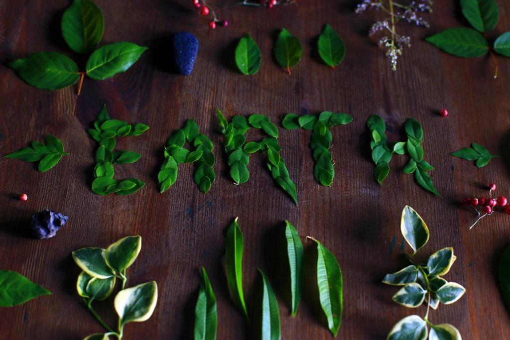 flatlay de feuilles fromant le mot earth